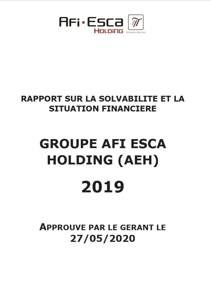 Rapport sur la solvabilité et la situation financière du Groupe Consolide 2019